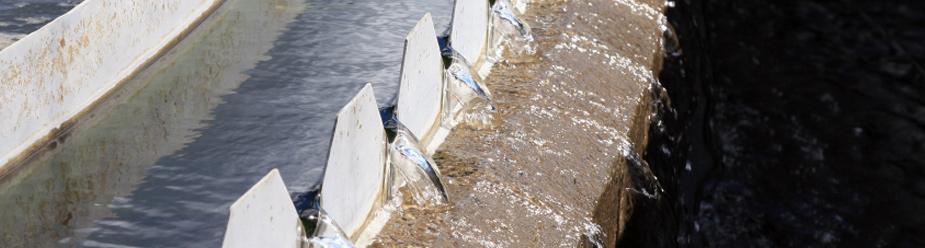 Solutii de tratare a apelor uzate